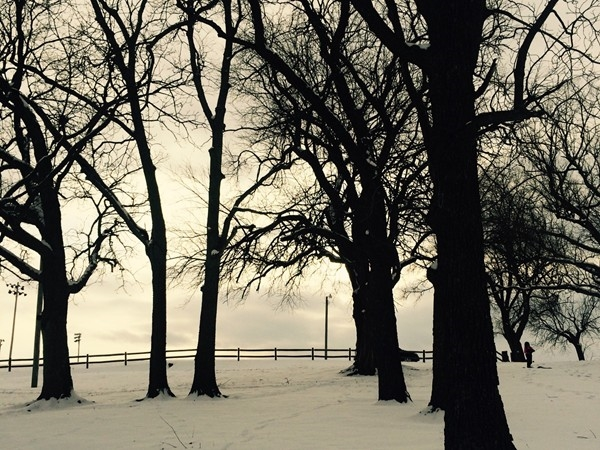 Dyer Park in the snow