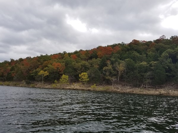 Fall has begun at Table Rock Lake