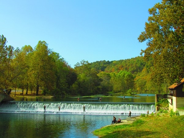 Fly fishing at Bennett Spring State Park - Lebanon