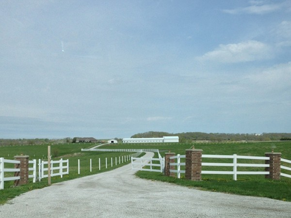 Nothing better than a gorgeous country homestead just outside of Odessa