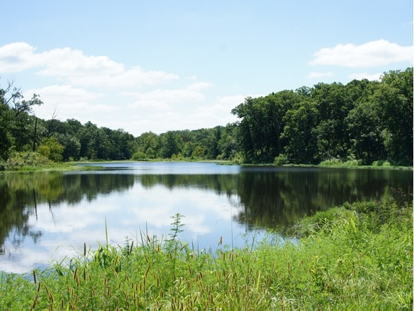 A few activities to enjoy at Knob Noster State Park - a picnic lunch, enjoy a hike, ride your bike
