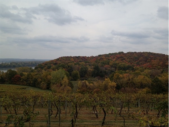 Jefferson City is located near the heart of the Midwest Wine Country on the Missouri River!