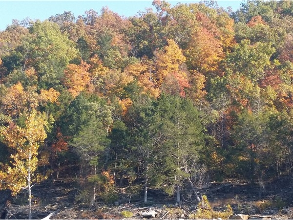 Fall at Table Rock Lake