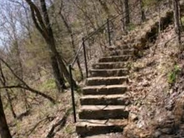 Descend these historic steps at the Lakeside Wilderness Area for a beautiful hike through nature!