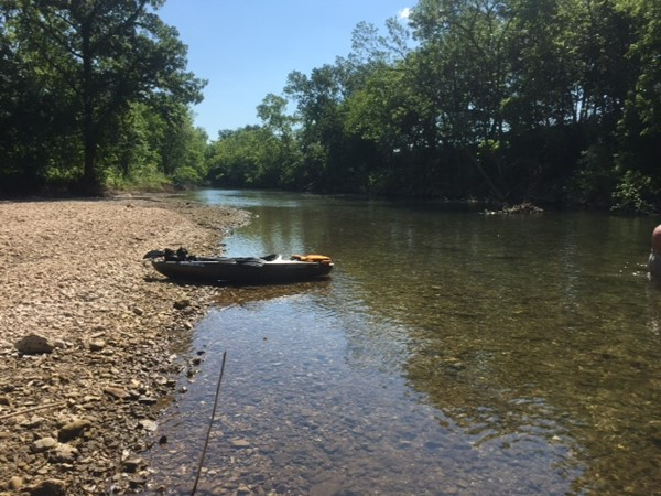 Floating and fishing from a kayak on the Roaring River in June