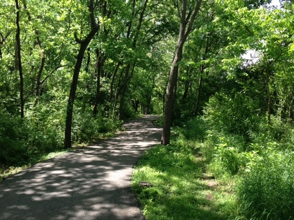 Walking trail near Sequiota Park, which is next to a babbling creek