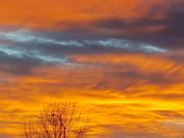 Oak Grove winter skyline