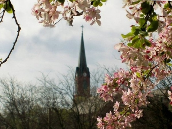 St. Peter's welcoming spring