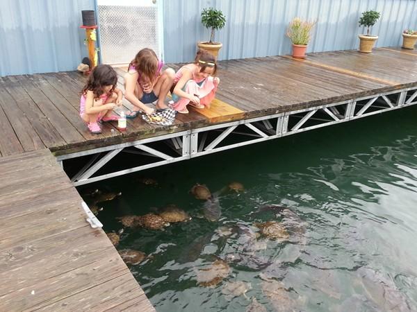 Shell Knob's Floating Restaurant
