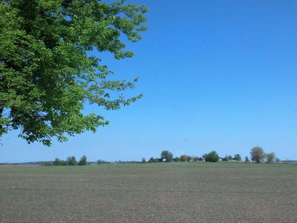 This is the view you get from your living room window out in the Higginsville countryside