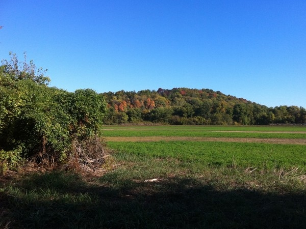 Bluff Views in Callaway County along HWY 94! Fall in Callaway County is the best!