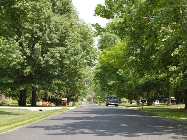 Beautiful tree lined streets in upscale Walnut Hills
