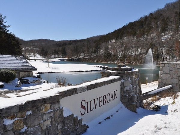 StoneBridge winter views are beautiful too! SilverOak located within StoneBridge