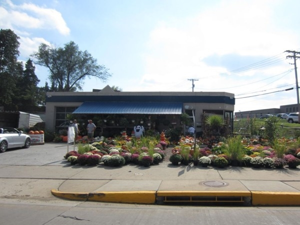 D&D Market on West Main Street is ready for Fall flower season