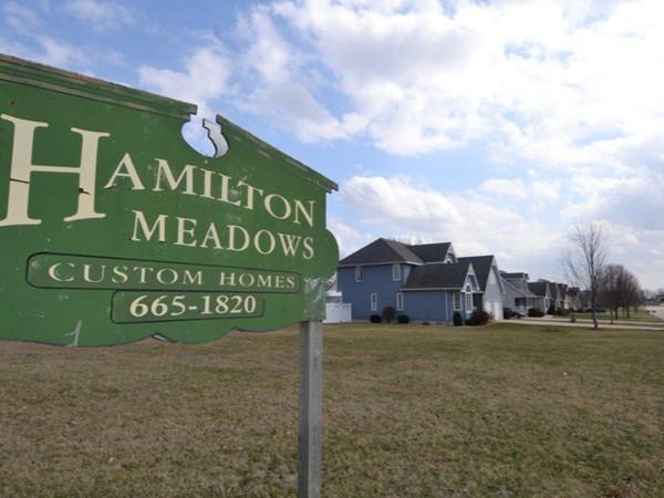Desirable Hamilton Meadows Subdivision