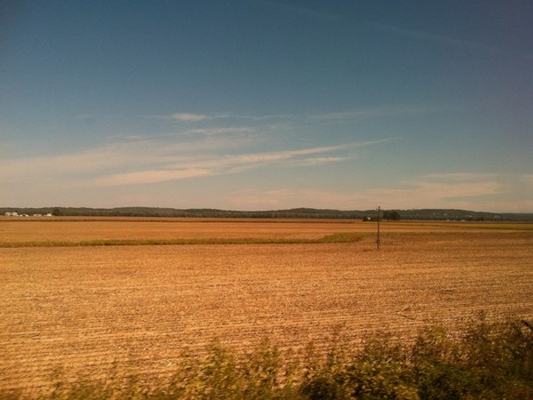 Gorgeous view of fields while riding Amtrak between the Jefferson City and Hermann stations