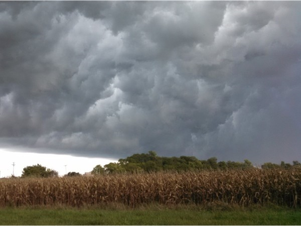 Storm clouds rolling in over the corn field east of Sedalia