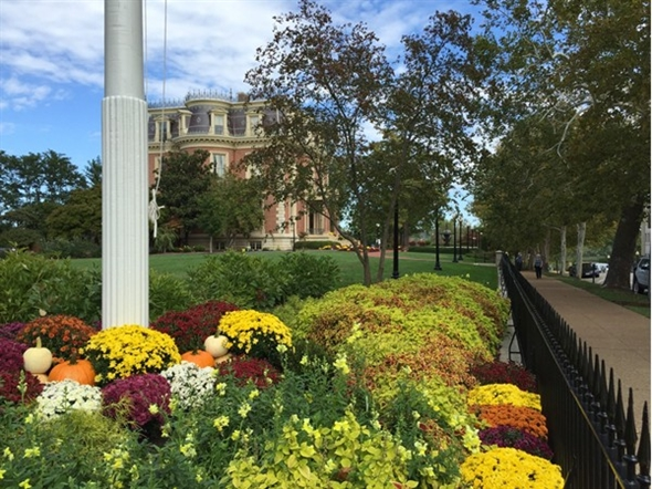 The fall flowers of the Governor's mansion