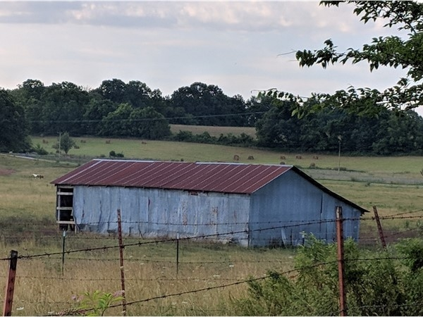Beautiful old barns all over
