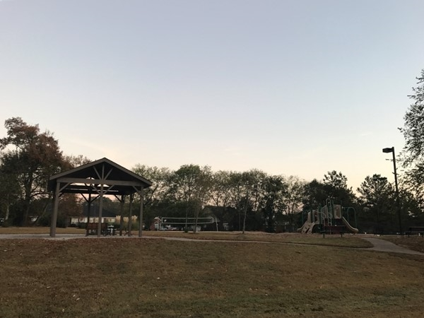 New playground and picnic area in Mt. Carmel by the River