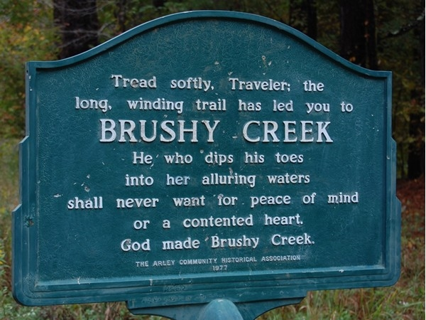 From the time I have spent in Brushy Creek this is surely a true statement