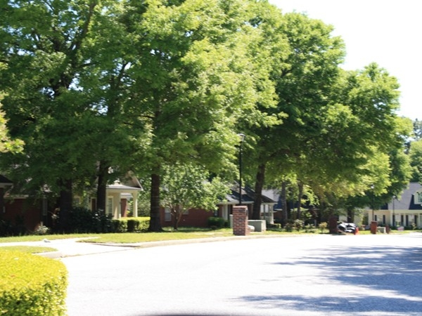 A street scene from Falls Church, a quiet little neighborhood on Spanish Forts Hwy 225