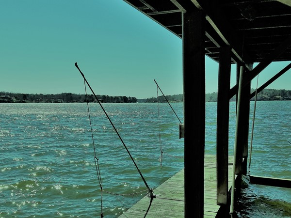 Lake Jordan is a family friendly place to enjoy yourself and chill out. Fishing is great