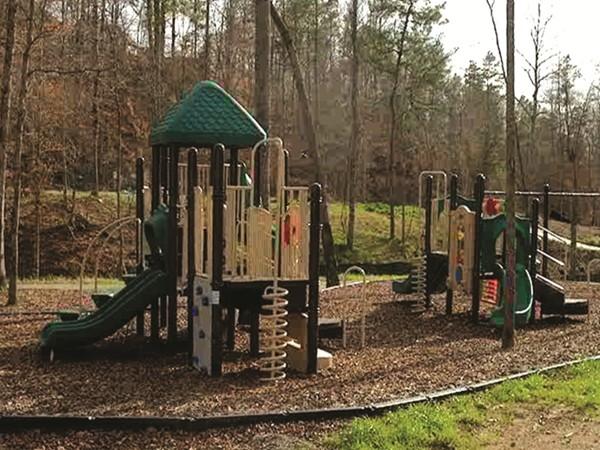 Riverwoods Play Area