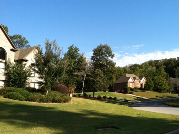 Homes in The Woodlands