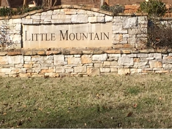 Little Mountain. Gorgeous estate homes