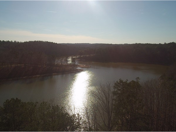 Peaceful view of Lake Wedowee