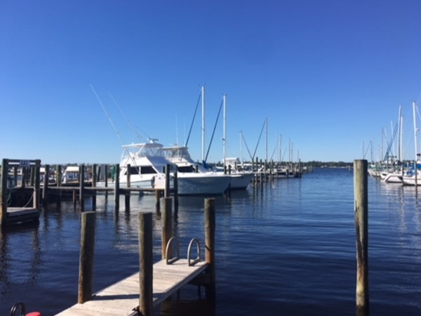Bear Point Harbor in Orange Beach