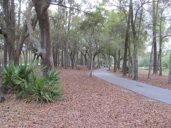 My wife and I enjoy the walking/biking path that extends from The Peninsula to Orange Beach