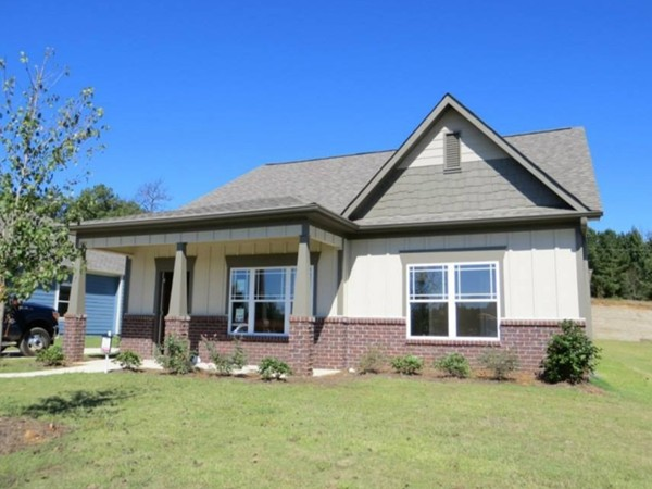 New construction homes similar to these are located in Timberleaf