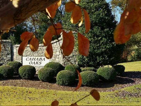 Cahaba Oaks - An Indian Springs Village subdivision
