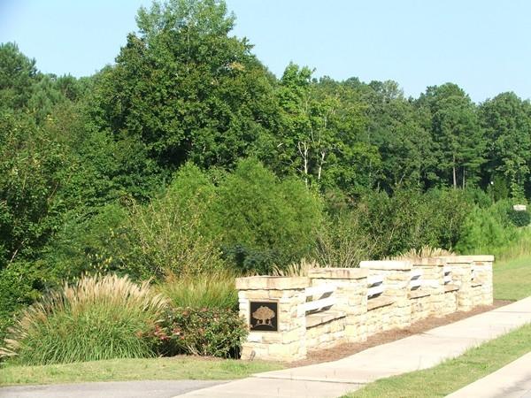 A wooded walkway in Hillsboro