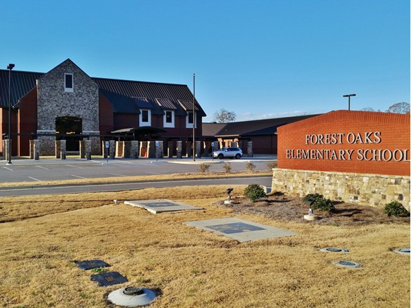Forest Oaks Elementary School - The newest school in the Chelsea area