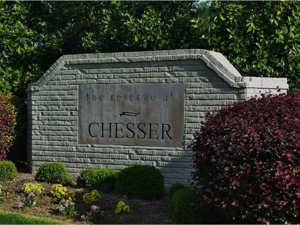 The Reserve at Chesser.  Townhomes with garages.  A special community