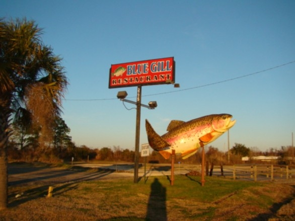 The Blue Gill Restaurant is an iconic Mobile landmark on the causeway (I-98).  Elvis played here!