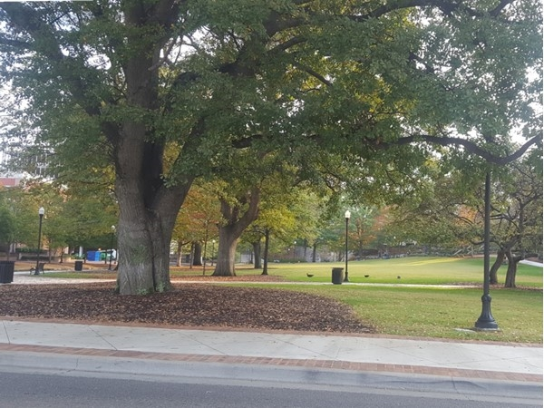 One side of Big Spring Park has been revamped and looks great, can't wait to see the other half