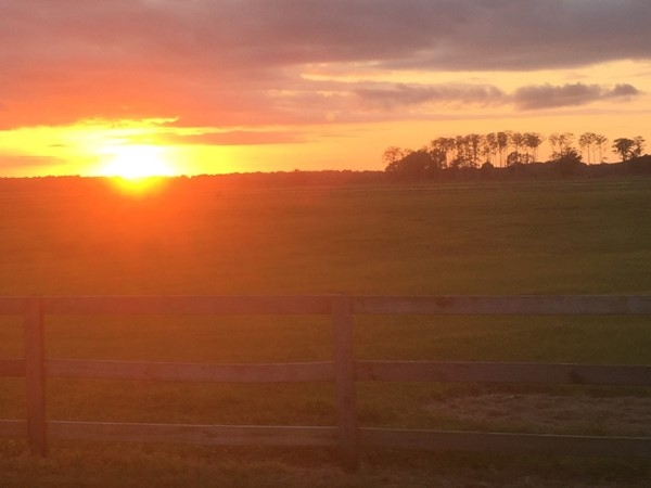 Farmland, fences, and sunsets...what more could you want? Silverhill, Alabama