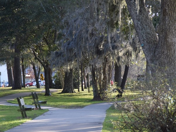Beautiful walkway among the moss-covered Live Oaks along South Beach Park in Fairhope