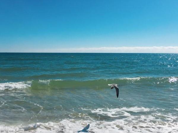 Calm winter day in Orange Beach