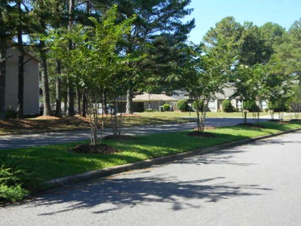 Thinking about shade trees and close to great amenities; that would be Academy Drive