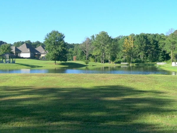 Fish in the lake, stroll around the walking trail or sit in the gazebo at Willow Oaks in Westover