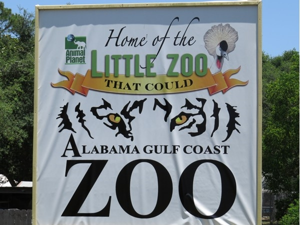"""Love to take the grandchildren to the """"Little Zoo That Could"""", you will too!"""