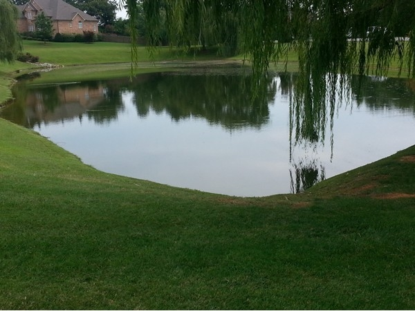 Residents of Clift's Cove enjoy several lakes, both large and small.
