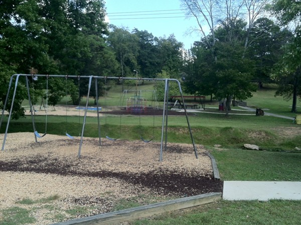 Playground at the Pleasant Grove Park.