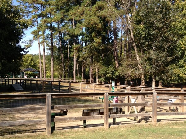 Loch Haven Dog Park is great area for your four legged friends!
