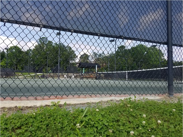 Lake Cyrus club tennis courts. Eight soft and two hard courts
